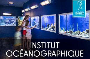 visite en famille de l'Aquarium de l'Institut océanographique Paul Ricard