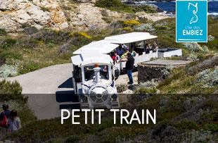tour en petit train touristique de l'île des Embiez