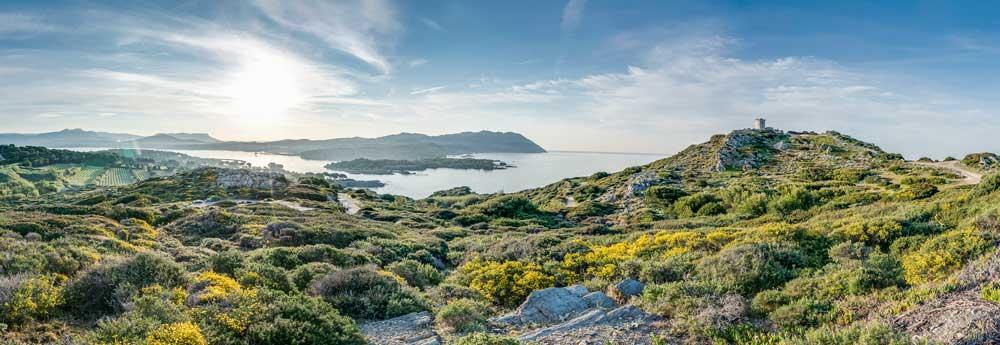 Vue panoramique de l'île des Embiez, acquise par Paul Ricard en 1958