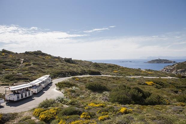 Le petit train de l'île des Embiez visite commentée de l'île, tour de l'île des Embiez