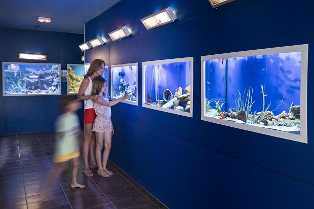 Aquarium et musée de l'Institut océanographique Paul Ricard